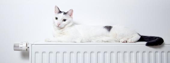 Komfortable Wärme
